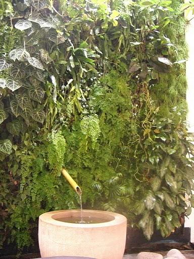 Greening Beauty - Espace Weleda Paris
